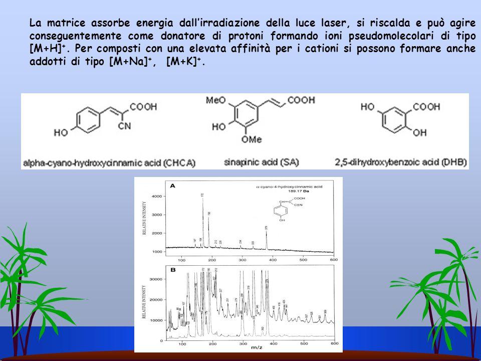 La matrice assorbe energia dall'irradiazione della luce laser, si riscalda e può agire conseguentemente come donatore di protoni formando ioni pseudomolecolari di tipo [M+H]+.